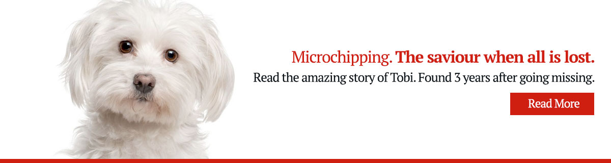 Tobis Story, Microchipping