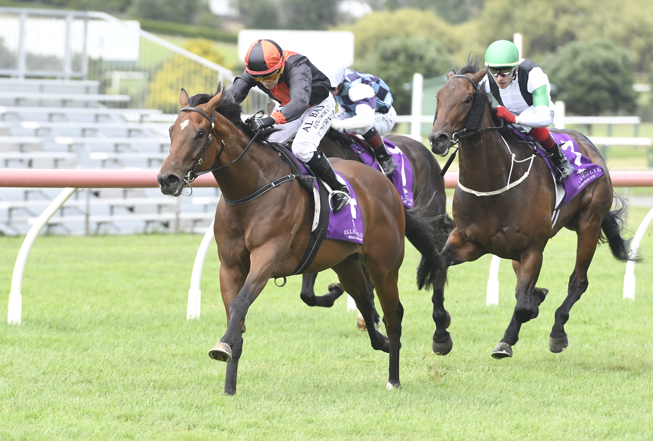 Race at Ellerslie