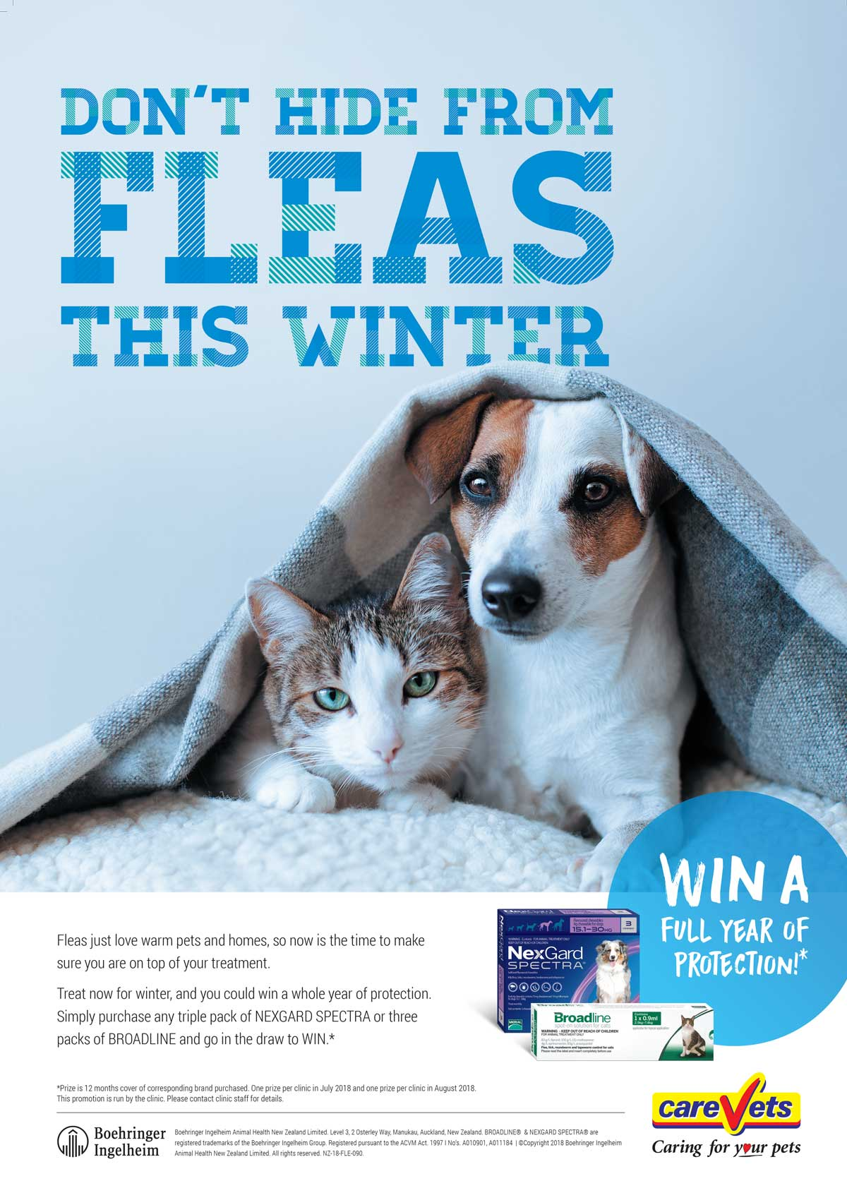 Don't Hide From Fleas This Winter